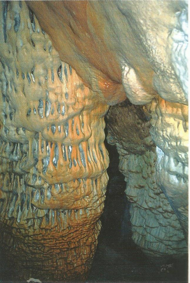 Σταλακτίτες στο Σπήλαιο Λιμνιώτη
