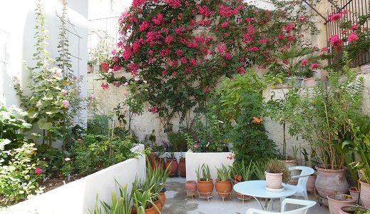 Πρώτο βραβείο στο διαγωνισμό φωτογραφίας κήπου| Το πατρικό σπίτι της οικογένειας Κωνσταντινίδη, από τις Πυλές Καρπάθου