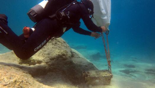 Καθαρισμοί σπηλαίων και βυθού και παρακολούθηση της Μεσογειακής φώκιας από τον Φορέα Διαχείρισης Προστατευόμενων Περιοχών Δωδεκανήσου